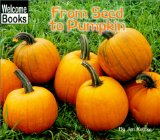 from-seed-to-pumpkin-kottke