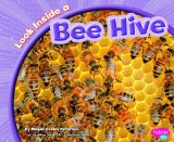 Inside-a-bee-hive