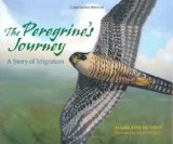 The-Peregrine's-Journey