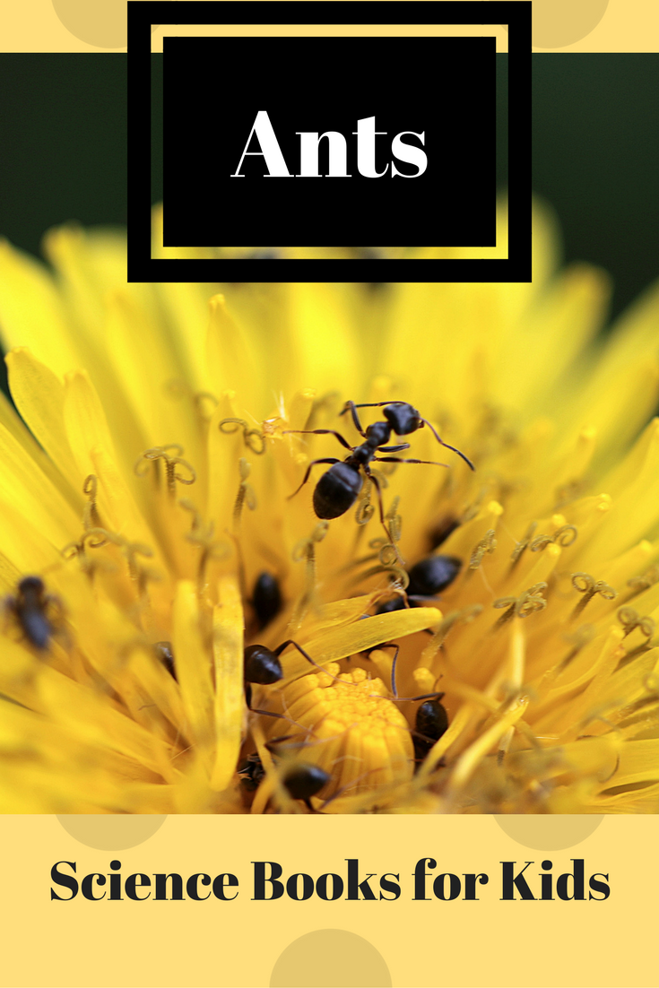 Ant Books for Kids | Science Books for Kids