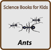 ant-books-button