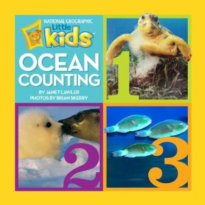 ocean-counting