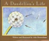 A-dandelions-life