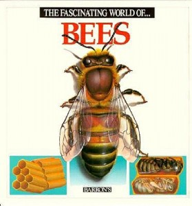 The-Fascinating-World-of-Bees-Parramon-Jose-Maria-9780812047202