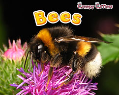bees-rissman