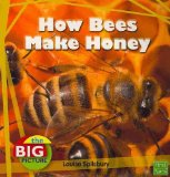 how-bees-make-honey