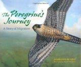 The-Peregrine's-Journey