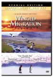 winged-migration