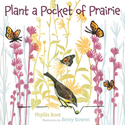 plant-a-pocket-prairie